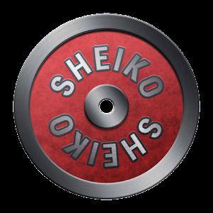 Sheiko Powerlifting Training For PC