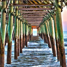 Pier Supports by Cathie Crow - Buildings & Architecture Bridges & Suspended Structures ( pylon, nature, pier, ocean, landscape )