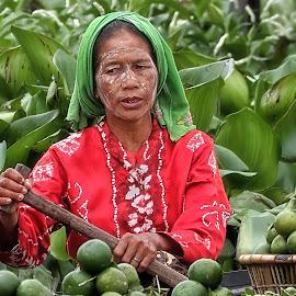 lb#5_50 by Tt Sherman - People Street & Candids ( market, woman, fruits )