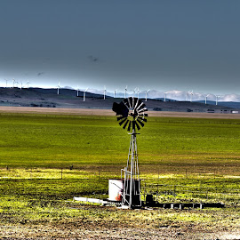 Lake George Windmill by Jason Kryger - Landscapes Prairies, Meadows & Fields ( george, lake, act, windmill )