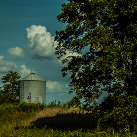out in the country by Trey Walker - Novices Only Landscapes ( clouds, green, trees, alabama, country )