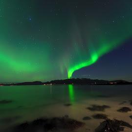 Northern lights over Stamnes beach by Marius Birkeland - Landscapes Beaches ( reflection, sky, aurora borealis, aurora, beach )