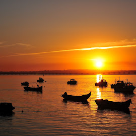 Sunset in Alcochete by Joao A Teixeira - Landscapes Sunsets & Sunrises ( alcochete, sunset, boats, portugal, light )