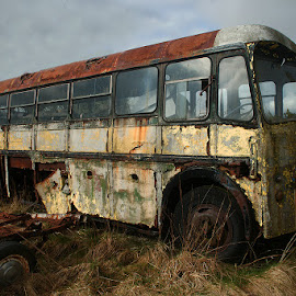Old Bus by Bob Rawlinson - Transportation Automobiles ( deriliction )