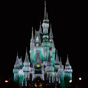 Castle Magic by Roy Walter - City,  Street & Park  Amusement Parks ( lights, disney world, amusement park, night, castle,  )