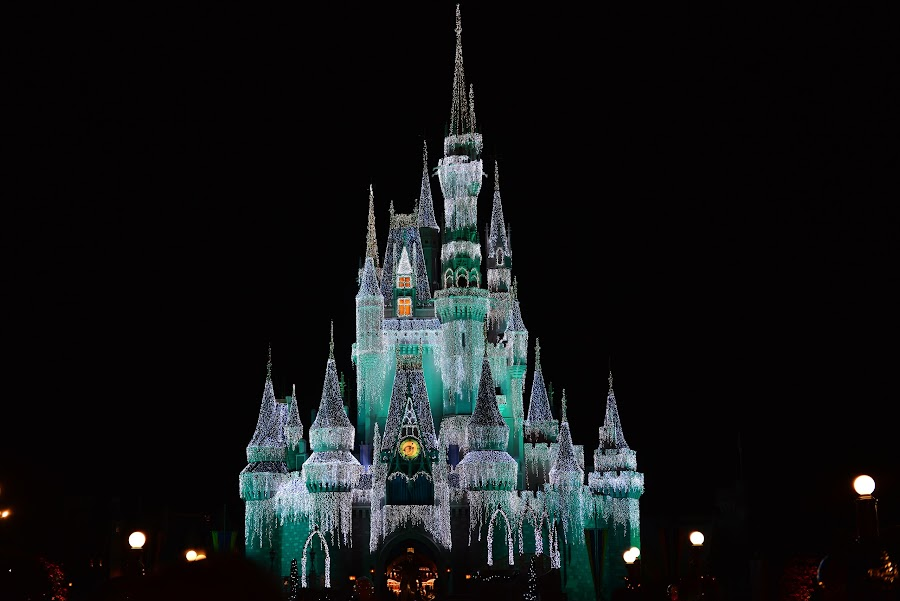 Castle Magic by Roy Walter - City,  Street & Park  Amusement Parks ( lights, disney world, amusement park, night, castle,  )