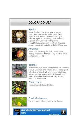 Colorado Mushrooms