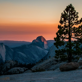 Last Light on Half Dome by Aman Rawal - Landscapes Mountains & Hills ( national park, half dome, yosemite, olmsted point, california, sunset )