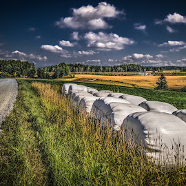 Askim, Norway 105 by IP Maesstro - Landscapes Prairies, Meadows & Fields ( field, ip maesstro, hdr, landscape, askim, norway )