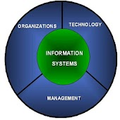 Free Management Information Systems APK for Windows 8