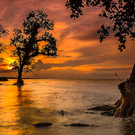 Somewhere between by Jee Cornelius - Landscapes Sunsets & Sunrises ( clouds, sky, tree, afternoon, indonesia, sunset, manado, beach,  )