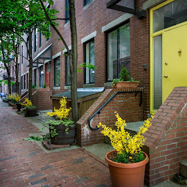 Boston Alley by Ed Esposito - City,  Street & Park  Street Scenes ( boston, brick, empty, night, june 2014, yellow, evening, alley )