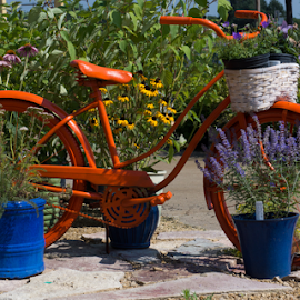 Flower Bike by Tina Hailey - Artistic Objects Still Life ( bike, tinas capture moments, flowers )
