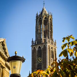 Utrechter Dom by Toine Baken - City,  Street & Park  Street Scenes ( detail, building, tower, dom, architecture, high, utrecht, netherlands )