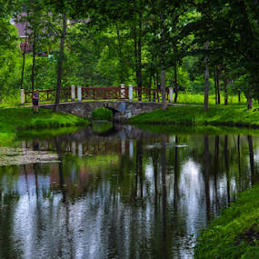 In the park by Irena Gedgaudiene - City,  Street & Park  City Parks ( water, park, green, trees, lithuania, pond, nikon d90,  )