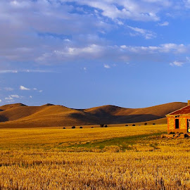 Burra Farmhouse by Mark Anolak - Landscapes Prairies, Meadows & Fields ( australia, ruins, burra, landscape, country )