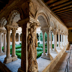 Cloister in Aix-en-Provence by Sigitas Baltramaitis - Buildings & Architecture Public & Historical