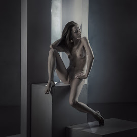 Alina  by Dmitry Laudin - Nudes & Boudoir Artistic Nude ( studio, body, nude, girl, geometry )
