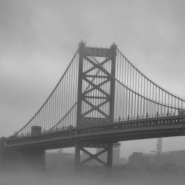 Bridge in the fog  by Anna Tripodi - Buildings & Architecture Bridges & Suspended Structures ( 2014, fog, best, bridge, city,  )