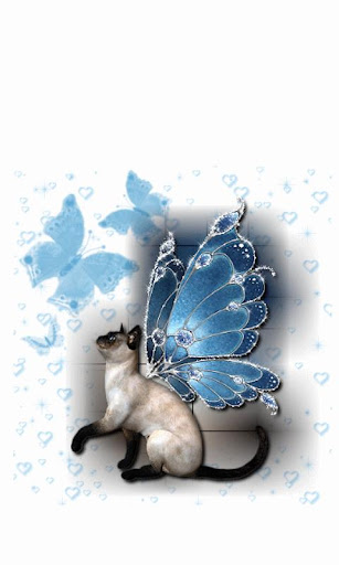 Siamese Cat with wings LWP