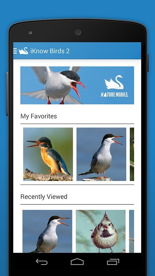 iKnow Birds 2 PRO - Europe Screenshot 1