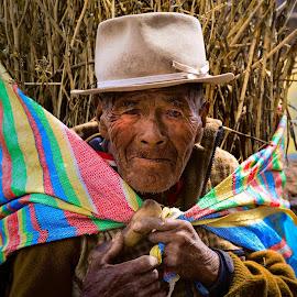 Cusco farmer by Charlotte Allen - People Portraits of Men