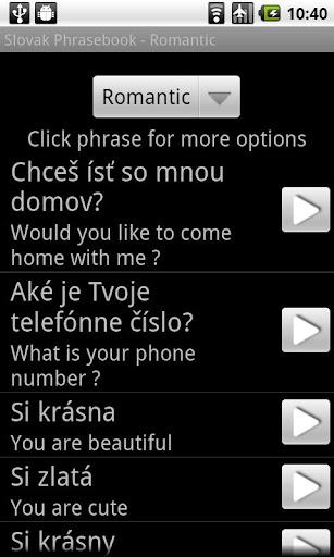 Slovak AUDIO Phrasebook LITE