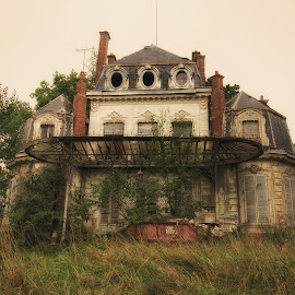 Chateau Verdure by Iris Beukhof - Buildings & Architecture Other Exteriors ( old, villa, exterior, chateau, irisbeukhof, beukiegirl, decay )
