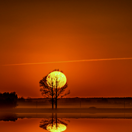 by Laimonas Šepetys - Landscapes Sunsets & Sunrises (  )