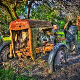 Old Tractor by Cliffy Wort - Transportation Other ( broken, old, tree, hdr, color, colorful, vintage, grass, house, tractor, pipe )