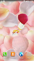 Screenshot of 3D Petals Live Wallpaper