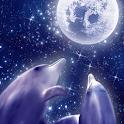 Dolphin-RYUKYU LOVERS Free icon