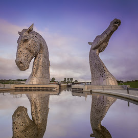 The Kelpies at Dawn by Paul Bradburn - Buildings & Architecture Statues & Monuments ( scotland, kelpies, dawn, falkirk )