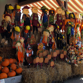 Scarecrows for Sale by Christine B. - City,  Street & Park  Markets & Shops ( ohio, cuyahoga valley national park, fall, pumpkins, scarecrows )