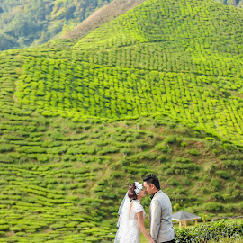 tea farm by Chew Liang - Wedding Bride & Groom ( tea farm )