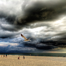 Storm rolls in by Charles Pfohl - Instagram & Mobile iPhone ( children playing, sunset beach, storm clouds, sea gull )