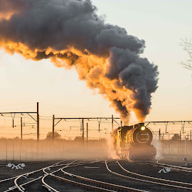 Breaking the early morning mist by Jacques du Toit - Transportation Trains ( railroad tracks, railway, railroad, steam train, locomotive, train, sunrise, morning )