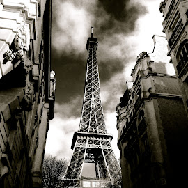 Gray Paris by Harris Kalofonos - Buildings & Architecture Public & Historical ( photo stream )