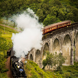The Great Jacobite, Glenfinnan Viaduct featured in (Harry Potter) by Don Alexander Lumsden - Transportation Trains