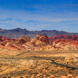 Road of Discovery by Steven McCarthy - Landscapes Deserts ( las vegas, desert, nevada, state park, valley of fire, path, nature, landscape )