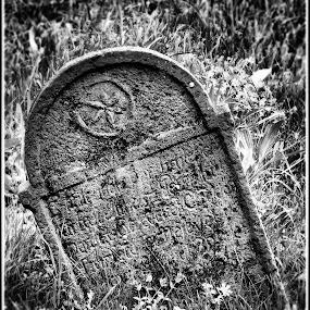 Elmulás  by Zlatko Sarcevic - Black & White Objects & Still Life ( emlék, magány, grave, past, graveyard,  )