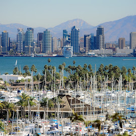 San Diego by David Allison - City,  Street & Park  Skylines