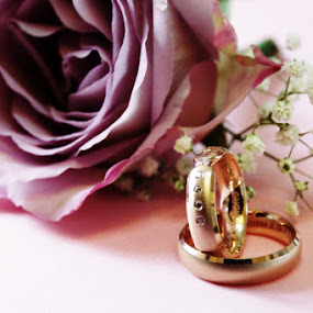 Rings by Nicu Buculei - Wedding Details ( rose, detail, purple, wedding, rings,  )