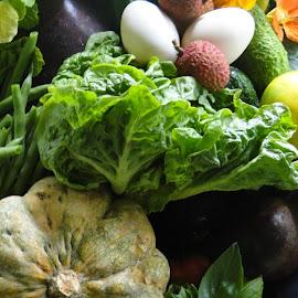 Nature's Bounty by Sherri Hillman - Food & Drink Fruits & Vegetables ( eggs, pumpkin, lettuce, green beans, eggplant, basil, eddible flowers )