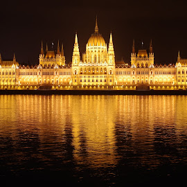 Parliament of Hungary by Zsigmond Bujtor - Buildings & Architecture Public & Historical ( parliament, reflection, budapest, night, danube,  )