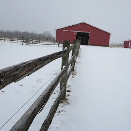 Fence by Marcia Taylor - Novices Only Landscapes (  )
