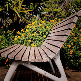 Garden bench by Janette Ho - Artistic Objects Furniture ( public, bench, furniture, object,  )