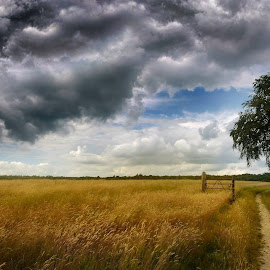 by Reg Ramai - Landscapes Prairies, Meadows & Fields