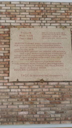 Padlim Med NOB 1941-1945 FAGG