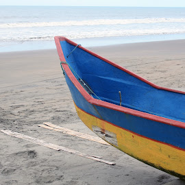 Blue and Yellow Fishing Boat on a Beach by Robert Hamm - Transportation Boats ( feb 25, 2013 )